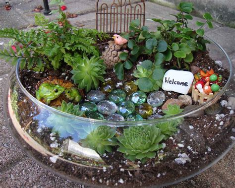 rock garden center brendens garden center miniature terrarium gardens small