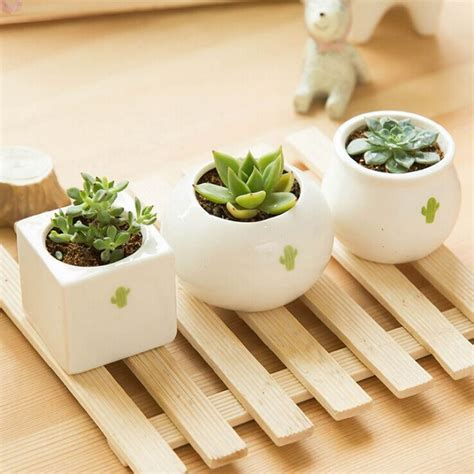 ingrosso vasi ceramica acquista all ingrosso giardino in ceramica vaso di