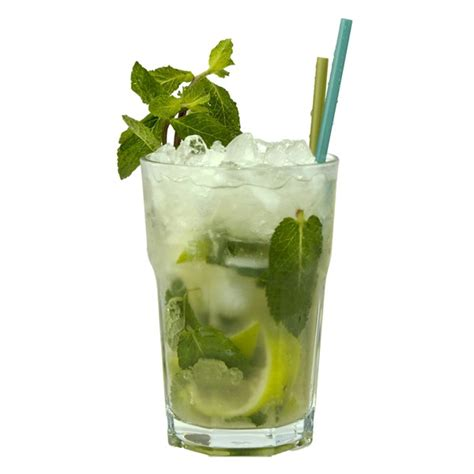 mojito cocktail mojito recipes dishmaps