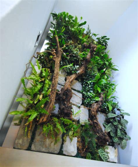 giardini interni giardini interni e pareti in verde verticale