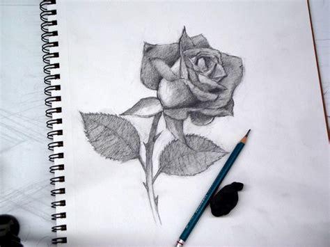 imagenes de una rosa para dibujar a lapiz dibujos de rosas a lapiz bbcpersian7 collections