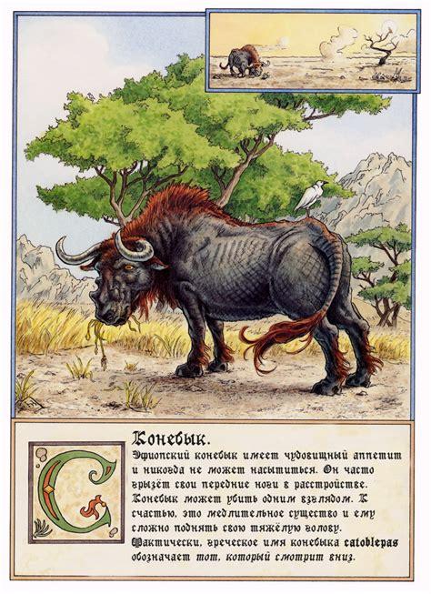 bestiary theoi greek mythology カトブレパスとは goo wikipedia ウィキペディア