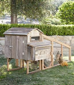 Small Backyard Chicken Coops For Sale Backyard Chicken Coops Cool Chicken Coops For Sale