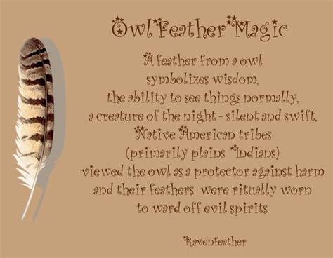owl symbolism pure spirit pinterest the world s catalog of ideas