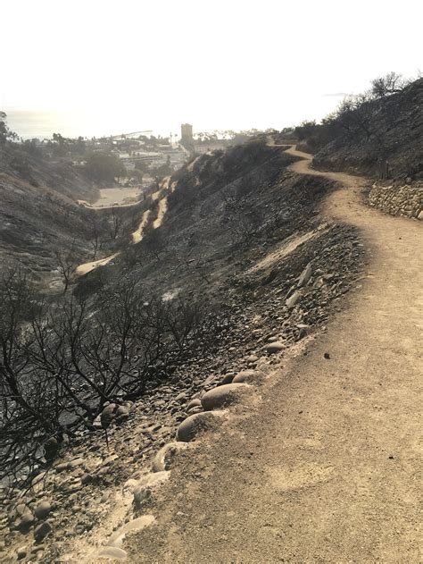 Climate Change And The California Wildfires Ventura Botanical Gardens