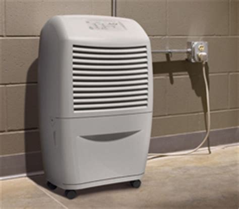 basement dehumidifiers manhattan ny habitat safe