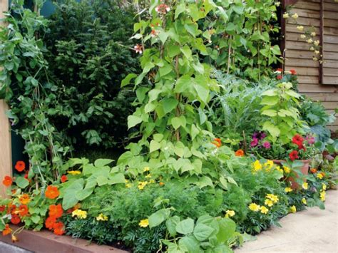 Gardening Quizzes Can You Answer 12 Gardening Questions Quizpug
