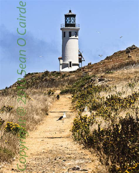 majestic island light california s majestic lighthouse s anacapa