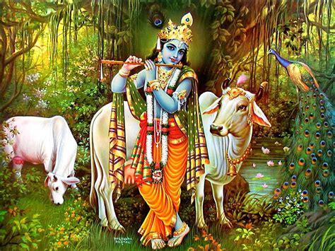 hindu god wallpapers lord krishna wallpapers god krishna with flute cow wallpaper download lord