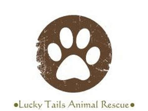 lucky rescue lucky tails animal rescue patch