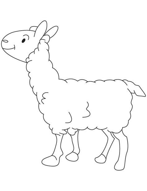 small sheep coloring page small lamb coloring page download free small lamb