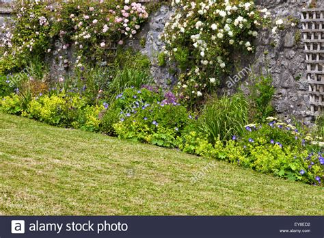 White Cottage Garden Flowers Cottage Garden Colourful Flowers Pink And White Climbing Roses On Dunneiv