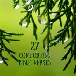 strengthened by the word 27 comforting bible verses
