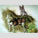Black Wolf Painting | 1024 x 746 jpeg 125kB