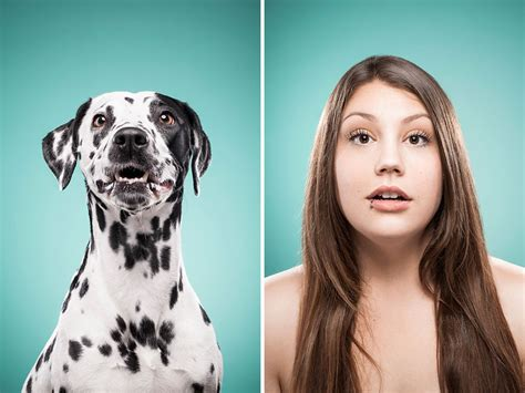 dogs that look like their owners 27 dogs that look like their owners
