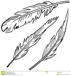 avian feathers sketch royalty free stock photography image 23436267
