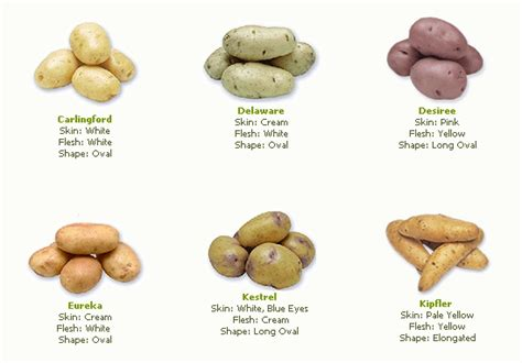 different types of potatoes recipes 28 images