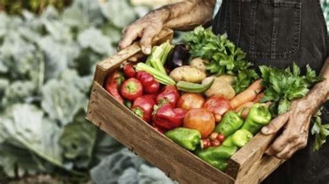 tecnologo alimentare torino giuseppe orefice quot guider 242 food la cania pu 242