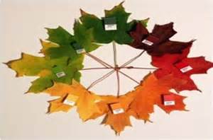 leaf colors autumn leaves for play and learning learning