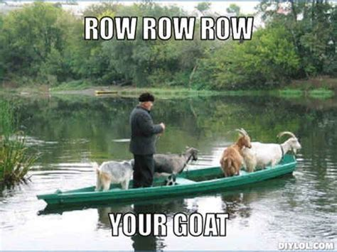 Funny Rowing Memes - community post 14 goat quotes for every occasion lol