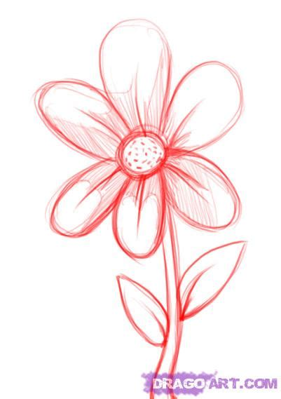 Easy To Draw Flowers by How To Draw A Simple Flower Step By Step Flowers Pop