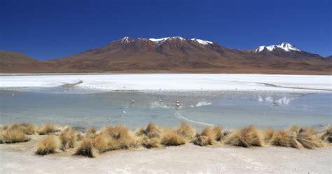 flamant canapé bolivie sud lipez sept 2012 yml
