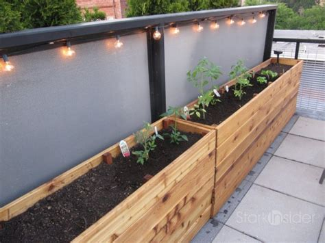 Building Planter Boxes by Narrow Planter Box