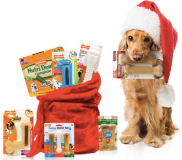 Dog Sweepstakes - nylabone sweepstakes 300 in dog treats everyone gets a coupon