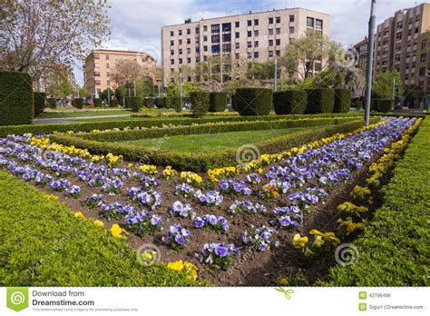 Garden City Stock Photo Image 42796496 Flowers Garden City