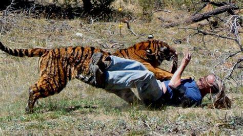 5 Animales Que Deberias Ver by Los 25 Animales Que M 225 S Personas Matan Cada A 241 O