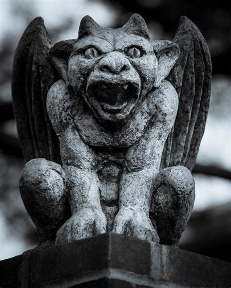 66 best images about clay gargoyles amp dragons on