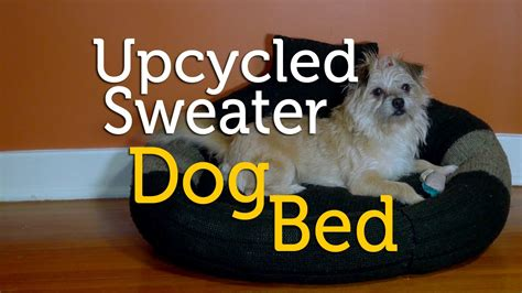 diy dog r for bed upcycle an old sweater into a dog bed diy youtube