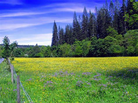 imagenes de paisajes para quinceañeras banco de im 193 genes 20 im 225 genes de paisajes naturales
