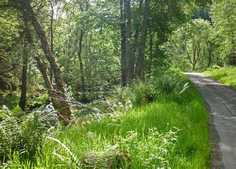 Motorrad Buch Am Wald by Motorradtour Durch Schottland Mit Zelt Und Schlafsack