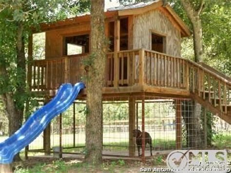 dog tree house tree house dog house owner of the fuzz balls pinterest