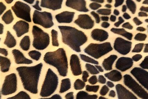 Animal Print Upholstery Fabric Uk by Animal Print Polyester Velboa Valboa Faux Fur Velour Dress