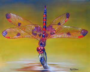 dragonfly color quot dragonfly colors quot by phyllis beiser redbubble