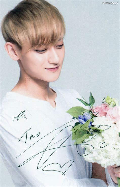 Exo Nature Republic Postcard Tao exo for nature republic s by flower tint lip balm