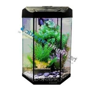 panoramic aquarium photo