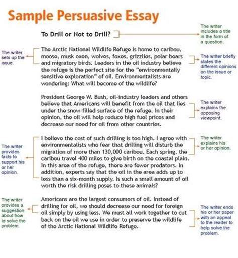 Writing A Persuasive Essay Middle School persuasive essay exles middle school