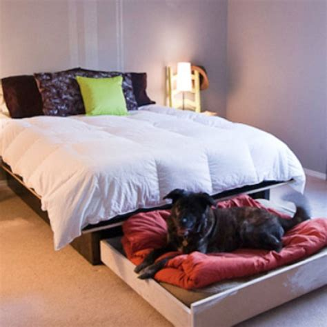 pet bedroom ideas 17 best images about dog beds on pinterest pets bed ideas and dog houses