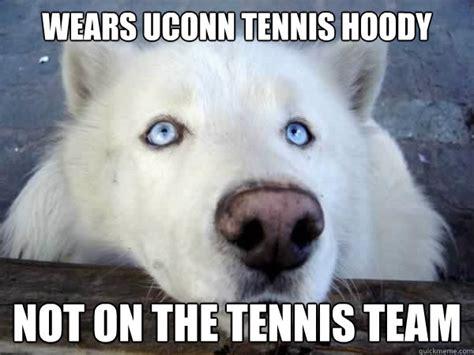 Huskie Meme - socially awkward husky memes quickmeme
