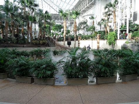 gaylord opryland resort picture of opryland hotel