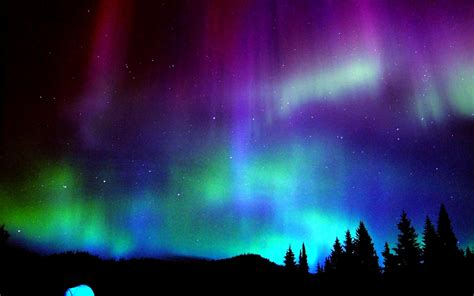 Nothern Lights by Celebrating The Northern Lights Of Borealis From