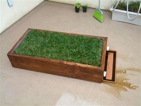 grass box indoor grass box for our house grasses dogs and boxes