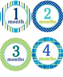 baby monthly stickers boys monthly one to twelve month
