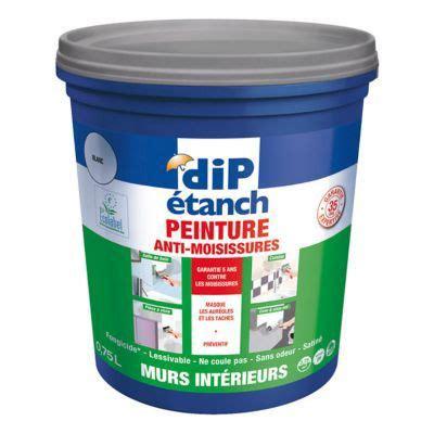 Produit Contre Moisissure Mur by Peinture Anti Moisissures Murs Int 233 Rieurs Dip Blanc 0 75l