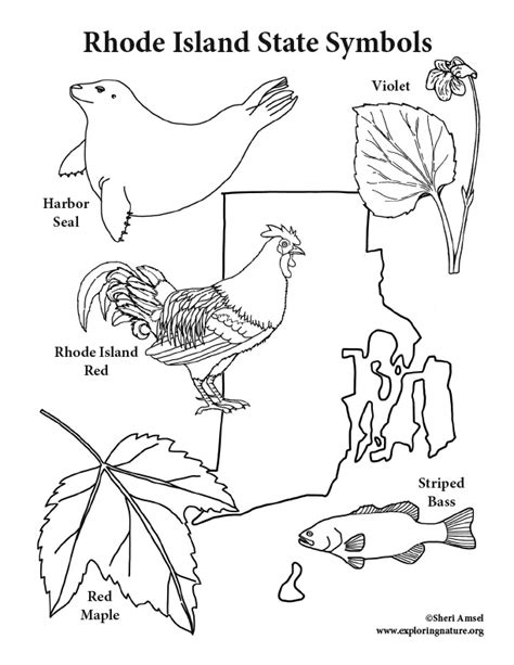 coloring pages of rhode island rhode island state symbols coloring page