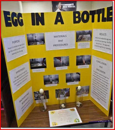 science projects for grade 7 free 20 elementary stem