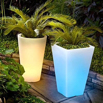 plants and planters outdoor illuminated planters gardening planters plants and gardens